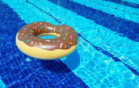 Pool Floatie Review